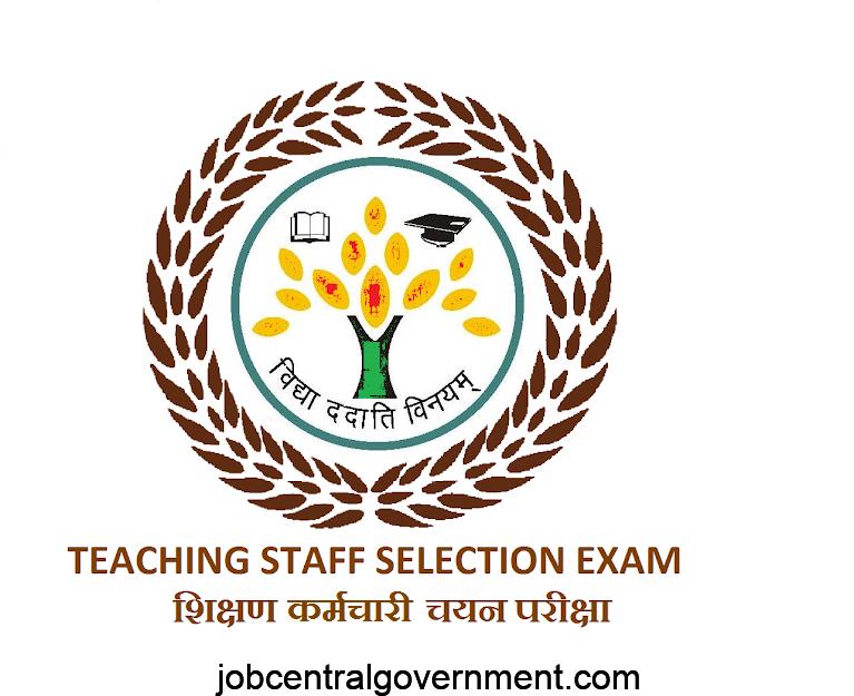 TSSE Assistant Teacher recruitment 2020